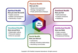 The Healthy Leader Model